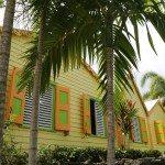 St Kitts Sugar Cane Plantation
