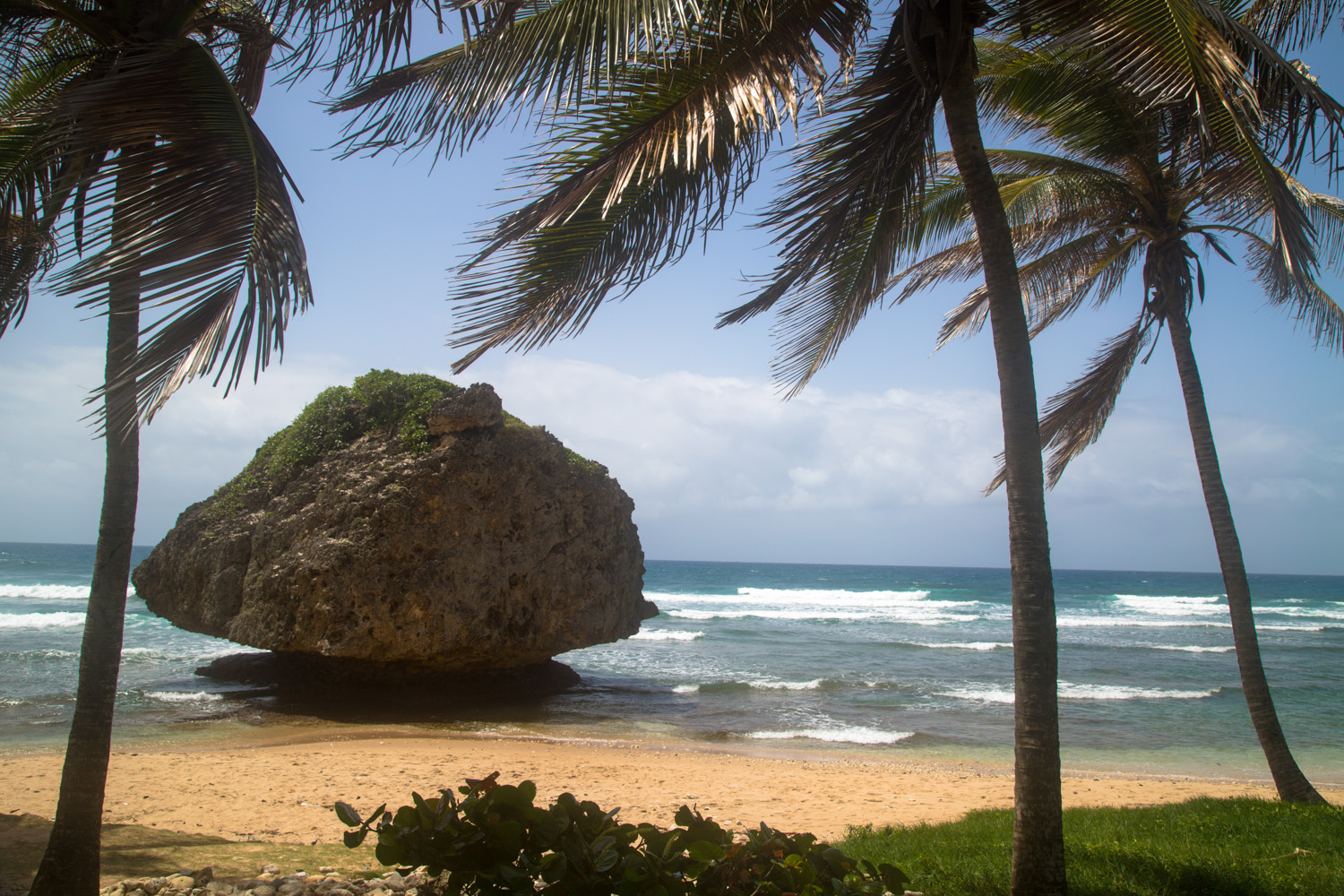 Bathsheba Beach